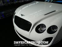 delaware_auto_show_davescarshow25